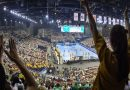 Federația Română de Handbal a fost amendată de EHF / Precizări legate de turneele Final Four din luna mai